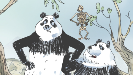 Pandas in the mist
