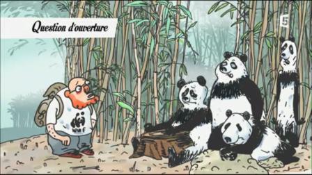 Pandas dans la brule